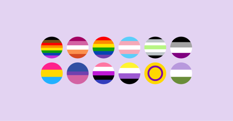 There are 12 pride flags as follows. LGBTQ flag with people of color stripes, lesbian, gay, trans, agender, asexual, pansexual, bisexual, genderfluid, nonbinary, intersex, and genderqueer.