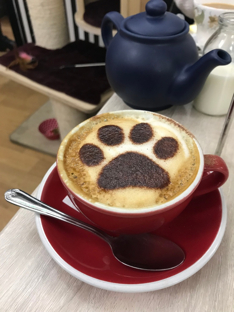 A cappuccino has a paw print design in the froth.